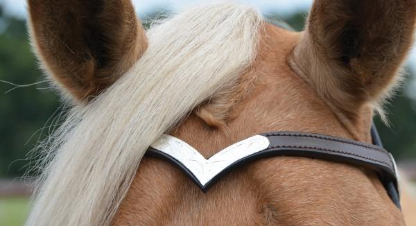 Kopfstück COLT SILVER, mit Zügeln © BUSSE GmbH